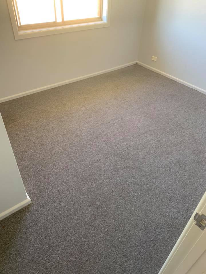 https://sunraysiacarpetcleaning.com.au/wp-content/uploads/2019/10/carpet3.jpg